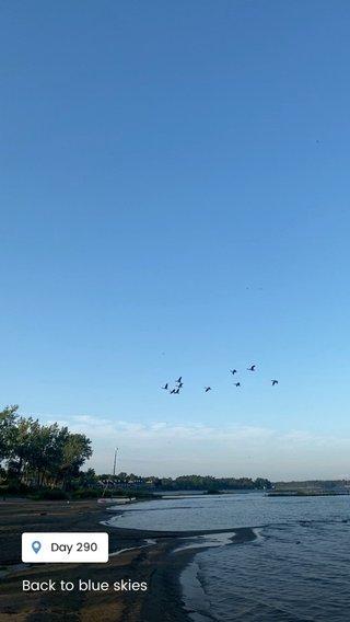 Back to blue skies