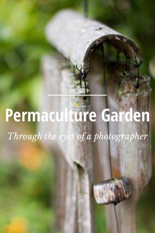 Permaculture Garden Through the eyes of a photographer