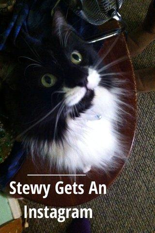 Stewy Gets An Instagram