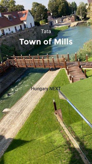 Town of Mills Tata Hungary NEXT