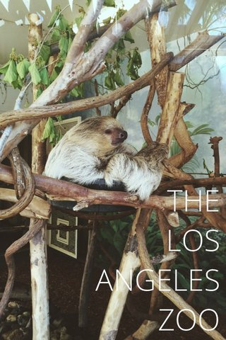 THE LOS ANGELES ZOO