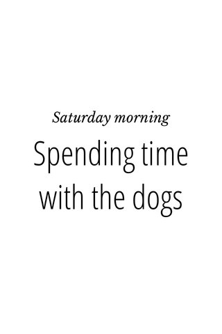 Spending time with the dogs Saturday morning