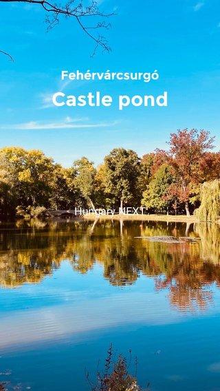 Castle pond Fehérvárcsurgó Hungary NEXT