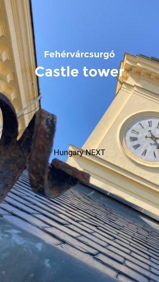 Castle tower Fehérvárcsurgó Hungary NEXT