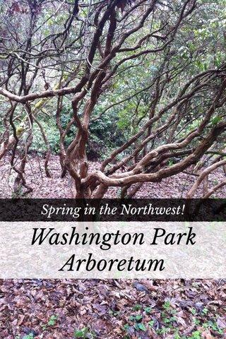 Washington Park Arboretum Spring in the Northwest!