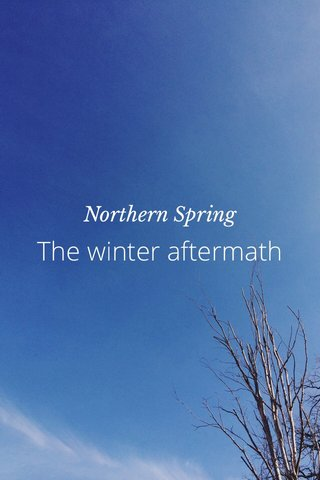 The winter aftermath Northern Spring