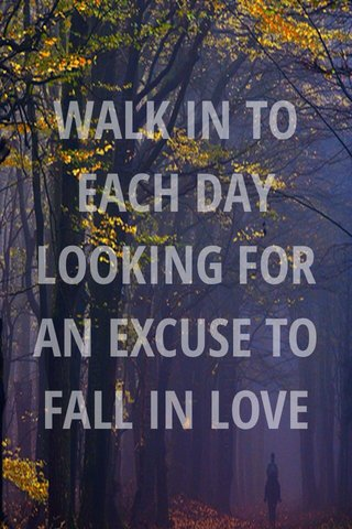 WALK IN TO EACH DAY LOOKING FOR AN EXCUSE TO FALL IN LOVE Veloro Bicycles, Inc