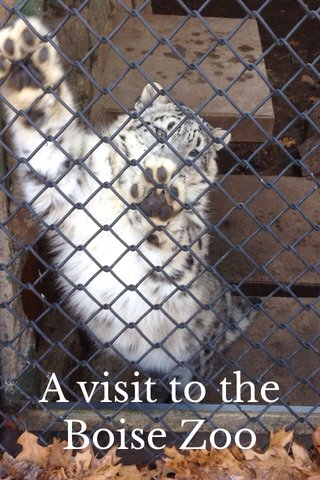 A visit to the Boise Zoo