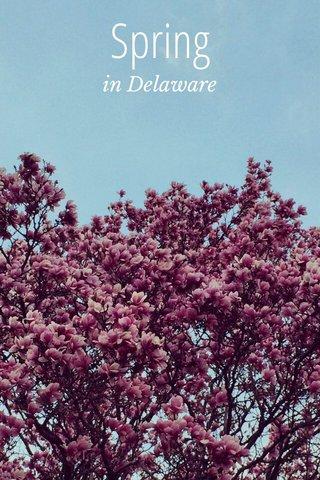Spring in Delaware