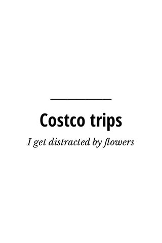 Costco trips I get distracted by flowers