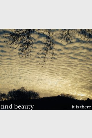 find beauty it is there