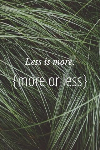 {more or less} Less is more.