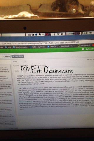 FMEA: Obamacare