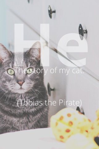 He The story of my cat. (Tobias the Pirate)