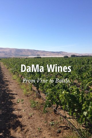 DaMa Wines From Vine to Bottle