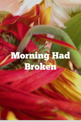 Morning Had Broken