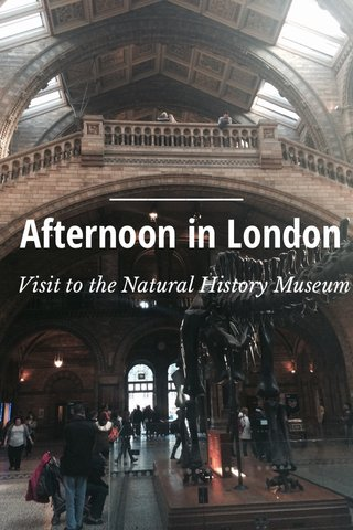 Afternoon in London Visit to the Natural History Museum