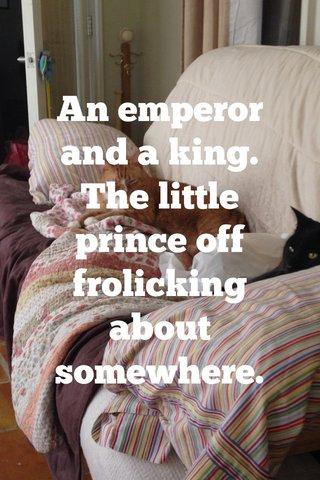 An emperor and a king. The little prince off frolicking about somewhere.