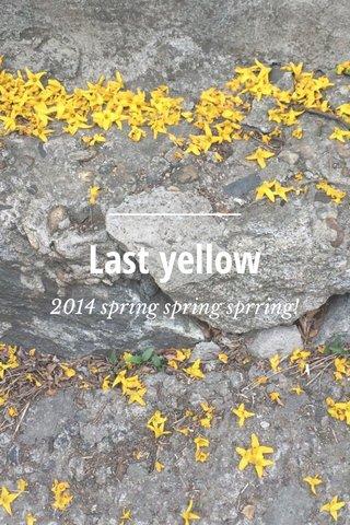 Last yellow 2014 spring spring sprring!
