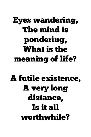 Eyes wandering, The mind is pondering, What is the meaning of life? A futile existence, A very long distance, Is it all worthwhile?