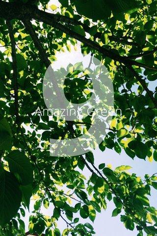 910 MAIN Amazing Green