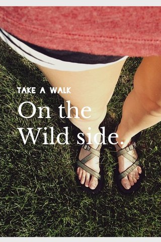On the Wild side. Take a walk