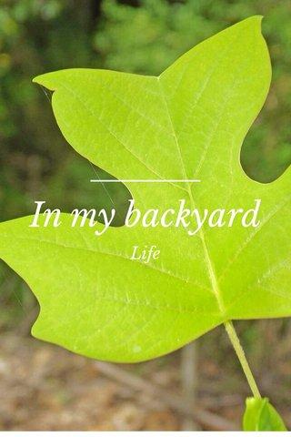 In my backyard Life