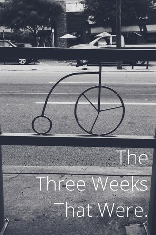 The Three Weeks That Were.