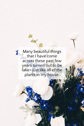 Many beautiful things that I have come across these past few years turned out to be fake- just like all of the plants in my house.