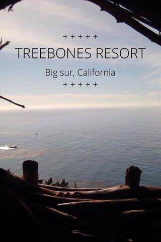 TREEBONES RESORT +++++ Big sur, California + + + + +