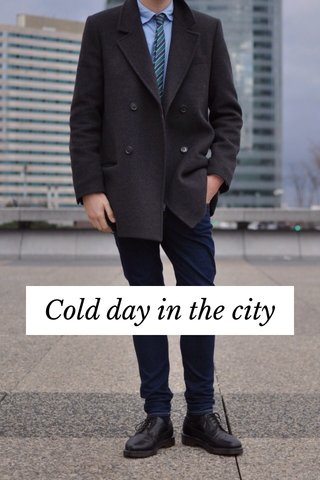 Cold day in the city