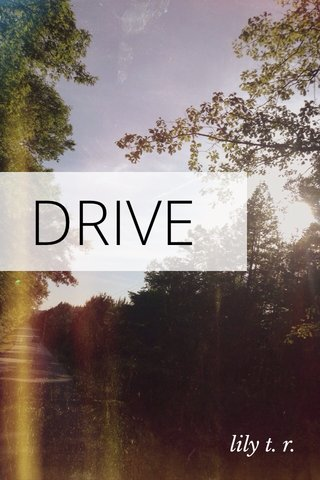 DRIVE lily t. r.