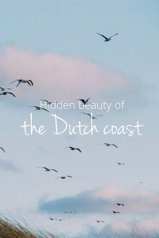 the Dutch coast Hidden beauty of