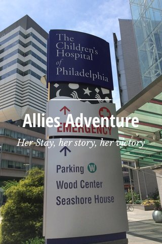 Allies Adventure Her Stay, her story, her victory
