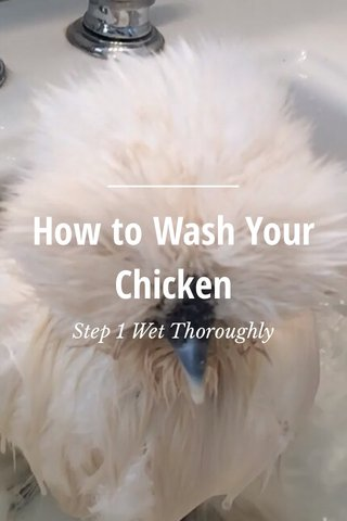 How to Wash Your Chicken Step 1 Wet Thoroughly