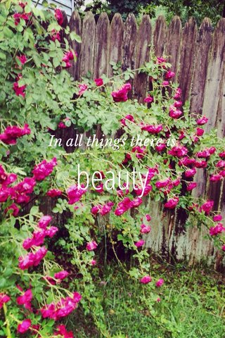 beauty In all things there is