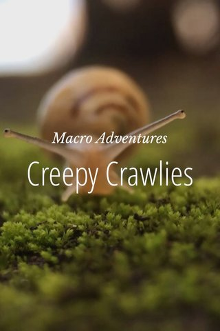 Creepy Crawlies Macro Adventures