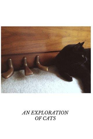 Joshua Tree AN EXPLORATION OF CATS