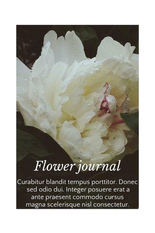 Flower journal Curabitur blandit tempus porttitor. Donec sed odio dui. Integer posuere erat a ante praesent commodo cursus magna scelerisque nisl consectetur.