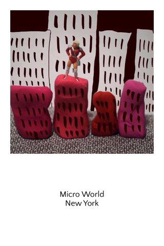 Micro World New York