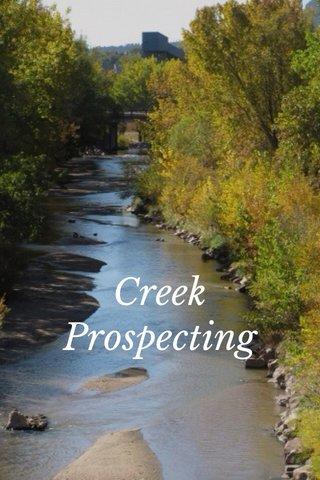 Creek Prospecting