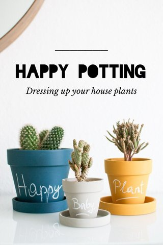 HAPPY POTTING Dressing up your house plants