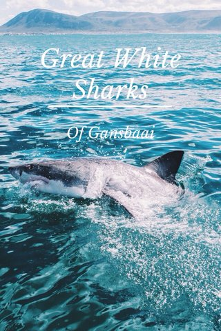 Great White Sharks Of Gansbaai