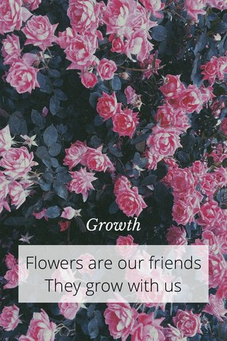 Flowers are our friends They grow with us Growth
