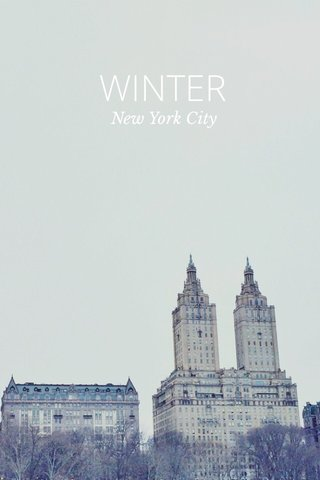 WINTER New York City