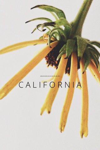CALIFORNIA ^^^^^^^^^^