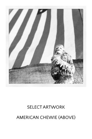 SELECT ARTWORK AMERICAN CHEWIE (ABOVE)