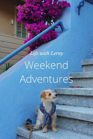 Weekend Adventures Life with Leroy