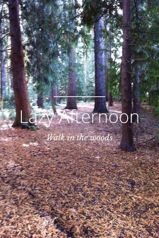 Lazy Afternoon Walk in the woods