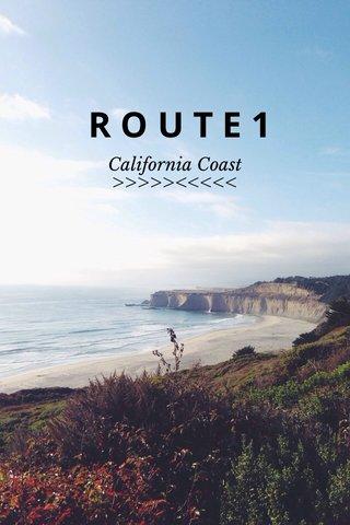 ROUTE1 >>>>><<<<< California Coast